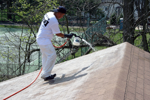 Roof Cleaning Nj Roof Pressure Washing Roof Washing Prices