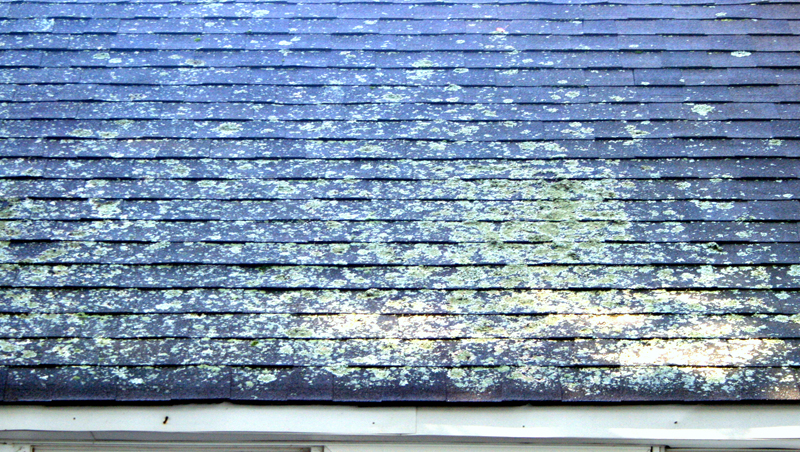 Roof Cleaning Fairfield Ct Roof Washing Services A Amp J