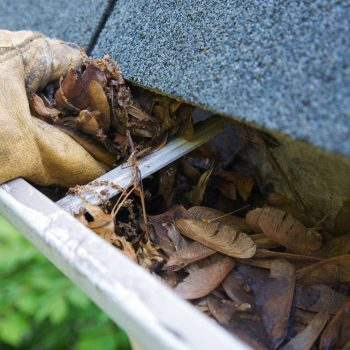 Professional gutter cleaners cleaning the leaves and debris out of clogged gutters