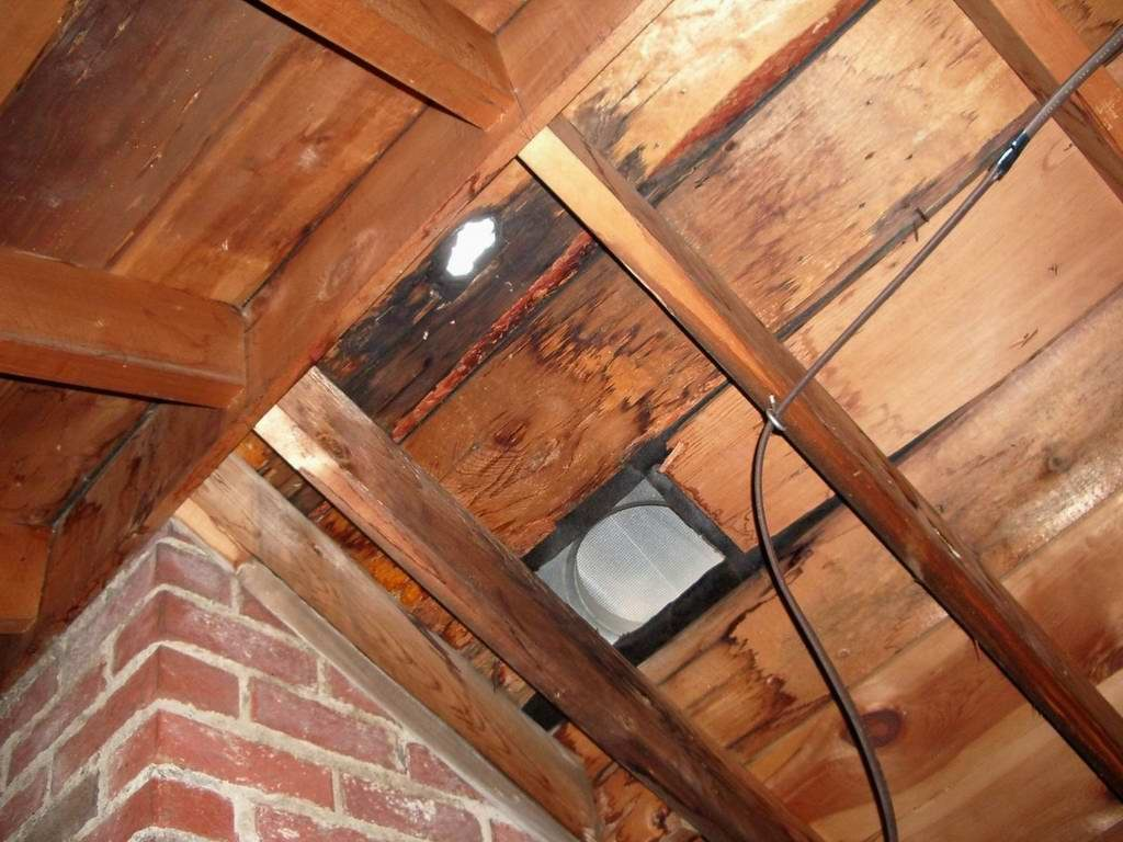 Visible sunlight entering through the attic means that you more than likely need a new roof.